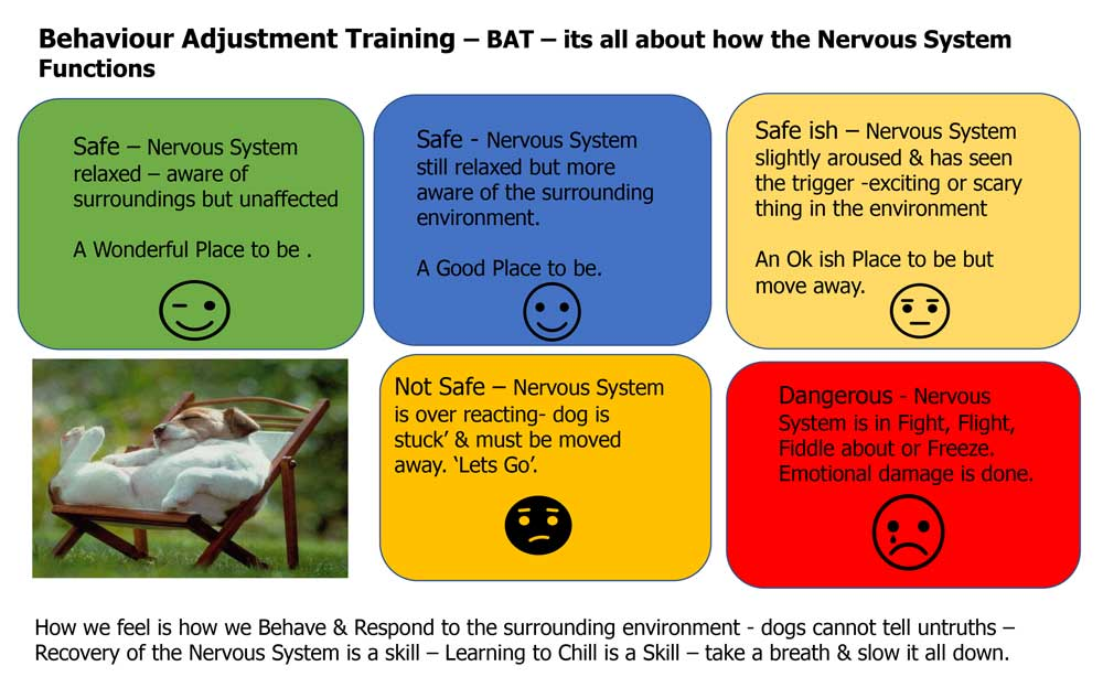 BAT Training explained