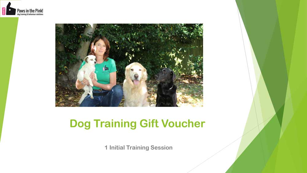 a training voucher for paws in the pink